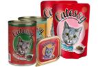 Catessy märkäruoat kissoille